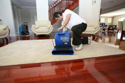The Ideal Way To Treat Carpet Water Damage