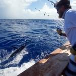 Fishing Sport