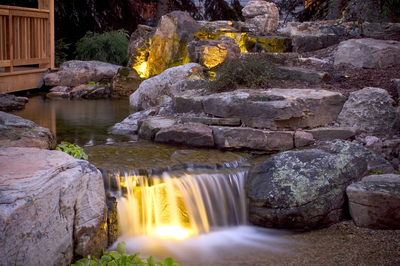 Tips on How to Ideally Illuminate Your Pond