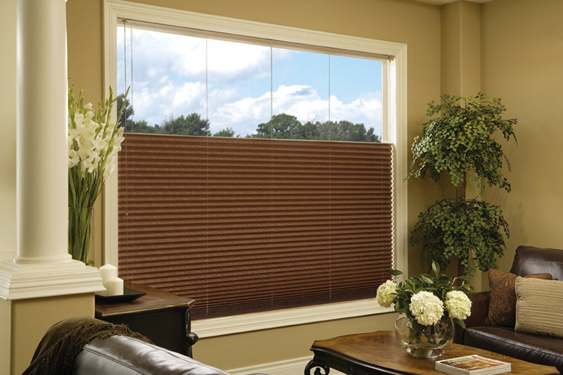 Cellular Blinds: The Ideal Window Treatment for Energy Efficiency