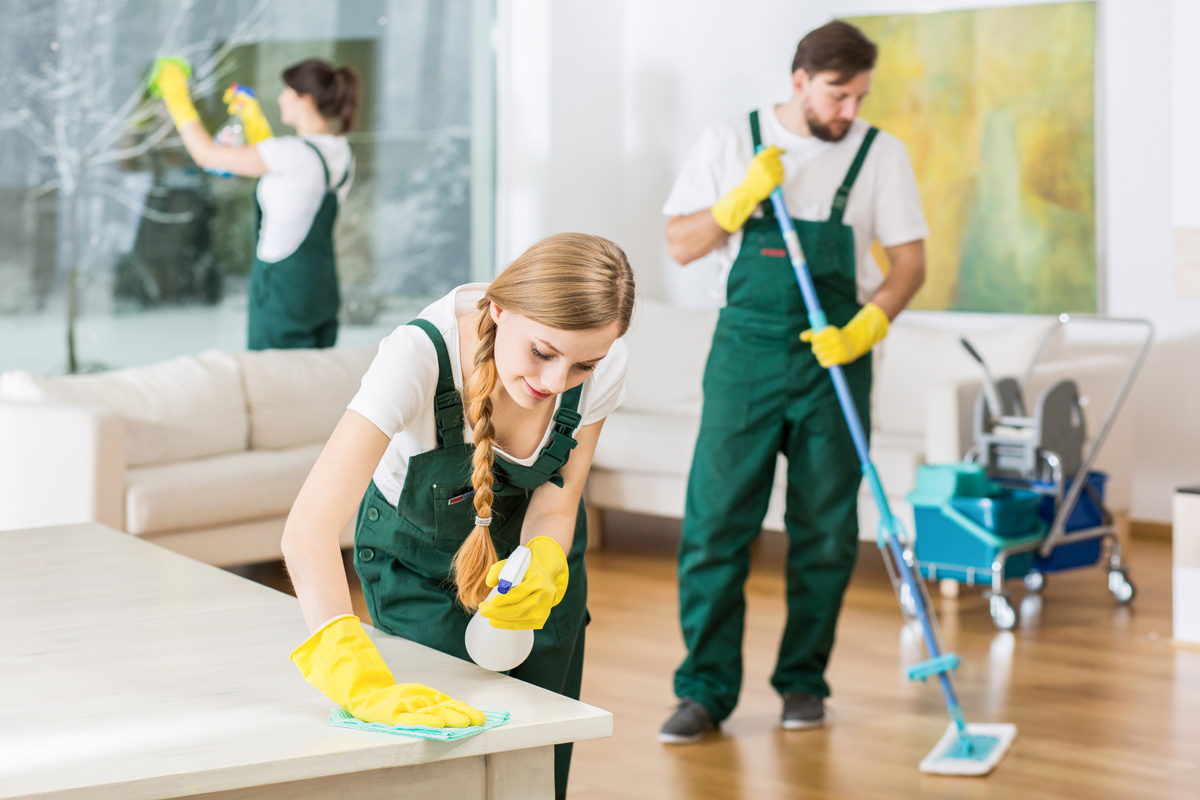 Bleach Cleaning Products: the Ideal Solution for Many Household Tasks